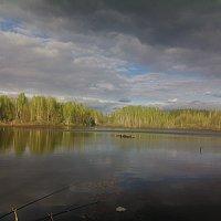 перед дождём :: александр дмитриев