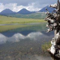 Озеро Зеленое :: lyalla k