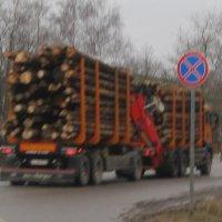 Лесовоз :: Maikl Smit