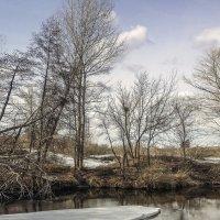 малые реки :: Александр Никишков