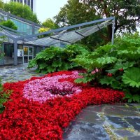 Planten un Blomen Hamburg :: Nina Yudicheva