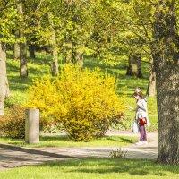 Весна :: bajguz igor