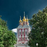 Новодевичий монастырь :: Aleks