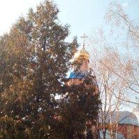 Храм Рождества Христова :: Dmitriy R
