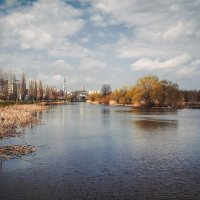 На реке Цне ........ :: Александр Селезнев