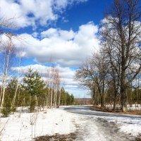 И тает снег.. :: Татьяна