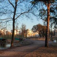В парке Александрино :: Владимир Засимов