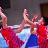 Игра в четыре руки. Волейбол. :: Иван Виноградов