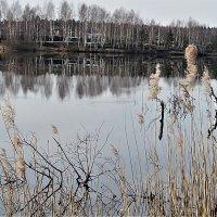 На озере :: Лидия Серг