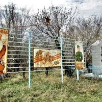 Заброшенное село, май :: Владимир