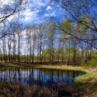 Панорамное фото Весны. :: Oleg S