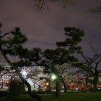 Парк Сумиёси, Осака, Япония :: Иван Литвинов