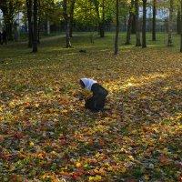Осенний букет :: Валентина Харламова