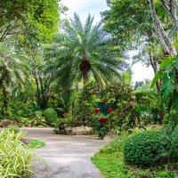 Ботанический сад :: Владимир Сороколит