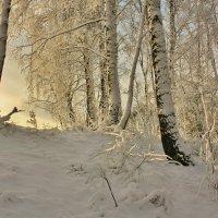 Там за бугром восходит солнце :: Сергей Лычагин