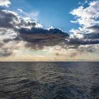 Чудское озеро :: Виктор Желенговский