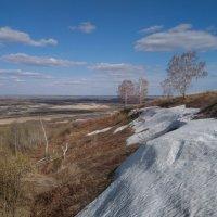 Прошлогодний снег :: Виктор Четошников