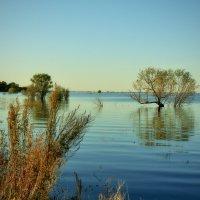 Рассвет над рекой :: Antonio Foraldo