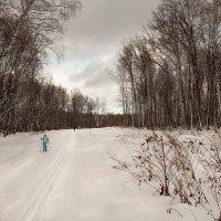 Бирюзовые цвета марта :: Виктор Замулин