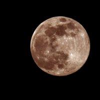 Розовая Луна :: Олег Савин