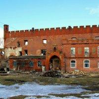 Жилая стена замка :: Сергей Карачин