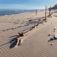 Берег Балтики :: Павел Дунюшкин