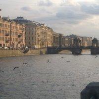 Петербург :: Людмила