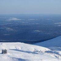 Вид с горы. :: Наталья Цветкова