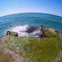 Море. :: Александр Леонов