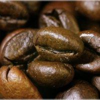 Кофе. :: Александр Шимохин
