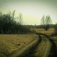Мрачный пейзаж :: Даниил Шадрин