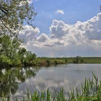 Пейзаж с облаками :: Ольга Винницкая (Olenka)