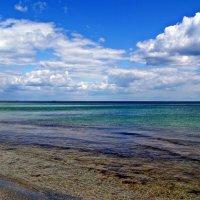 самое синее в мире Черное море мое... :: Александр Корчемный
