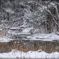 Напоминание о зиме. :: Ник Васильев