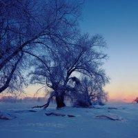 Мороз :: Александр Волков
