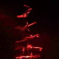 Импровизация в красных тонах :: просто Борисыч