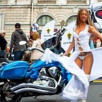Фестиваля St. Petersburg Harley Days 2016 :: Илья Кузнецов