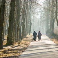 В старом парке... :: Александр Евдокимчик