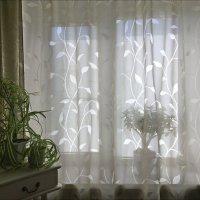 Весна на окне - а за окном ещё лучше!... :: Надежда