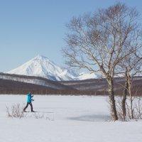весенний снег :: Александр Белов