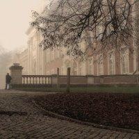...Я снова уйду в туман... :: Elena Ророva