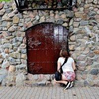 Так интересно, что же там, за этой дверцей? Может страна чудес? :: Восковых Анна Васильевна
