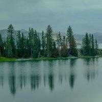 Едем дальше вдоль оз. Йеллоустон, штат Вайоминг :: Юрий Поляков
