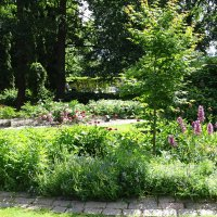 летом в парке :: Sabina
