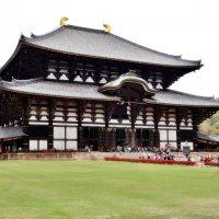 Нара Япония Храм Тодай-дзи :: Swetlana V