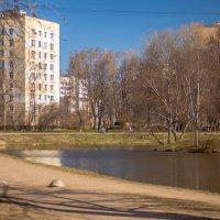 Воронцовский сквер :: Роман Алексеев