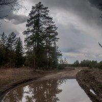 Дороги :: Владимир Новиков
