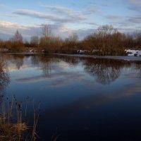 Тихий весенний вечерок на природе. :: Андрей Дурапов