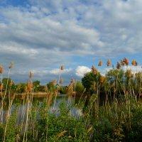 Майский ветер на Грязнухе гуляет... :: Лидия Бараблина