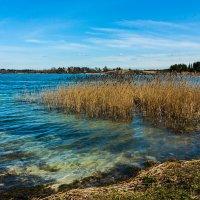 на озере :: Юлия Стальнова